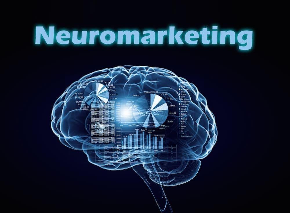 Abbildung eines Gehirns mit Überschrift Neuromarketing